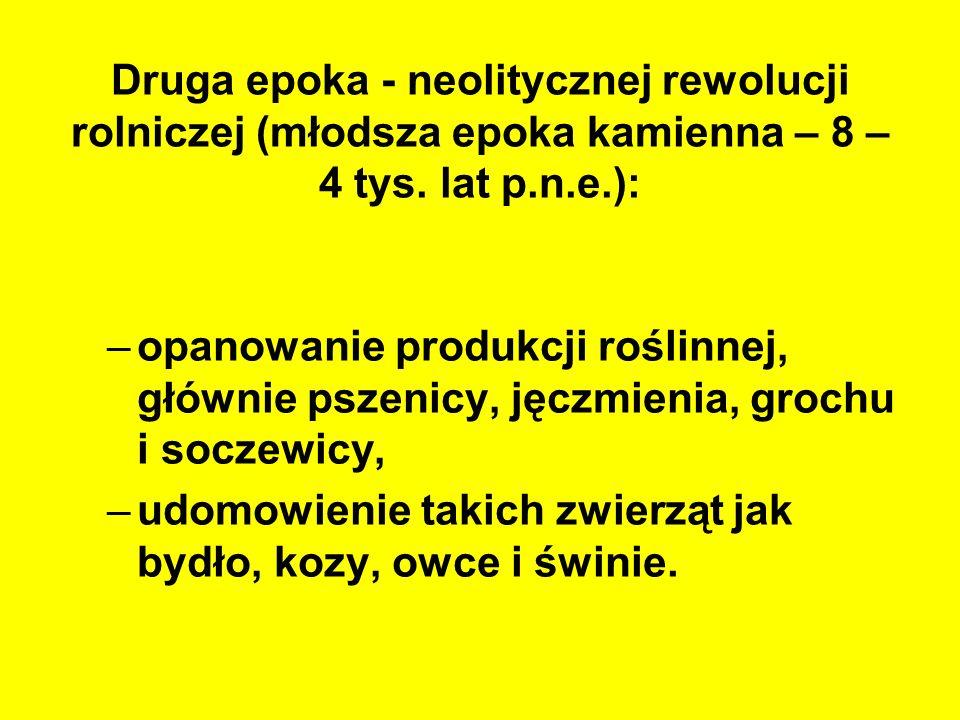 Pola sporów, pytania: czy polskie rolnictwo powinno być wielostronne, czy należy wyspecjalizować się w określonej produkcji, czy istnieją nisze rynkowe, w których możemy osiągnąć przewagę konkurencyjną.