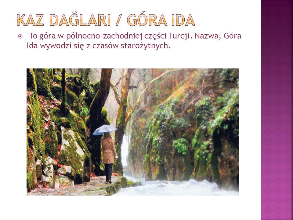 To góra w północno-zachodniej części Turcji. Nazwa, Góra Ida wywodzi się z czasów starożytnych.