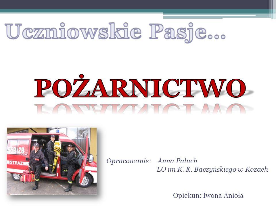 Opracowanie: Anna Paluch LO im K. K. Baczyńskiego w Kozach Opiekun: Iwona Anioła