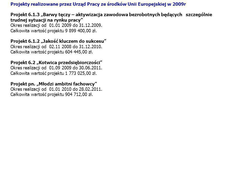 Projekty realizowane przez Urząd Pracy ze środków Unii Europejskiej w 2009r Projekt 6.1.3 Barwy tęczy – aktywizacja zawodowa bezrobotnych będących szc