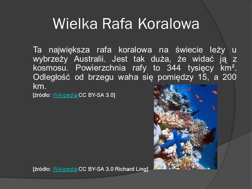 Wielka Rafa Koralowa Ta największa rafa koralowa na świecie leży u wybrzeży Australii. Jest tak duża, że widać ją z kosmosu. Powierzchnia rafy to 344