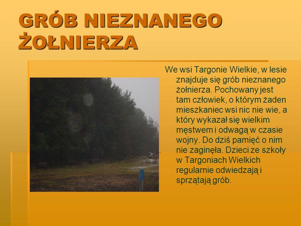 GRÓB NIEZNANEGO ŻOŁNIERZA We wsi Targonie Wielkie, w lesie znajduje się grób nieznanego żołnierza. Pochowany jest tam człowiek, o którym żaden mieszka