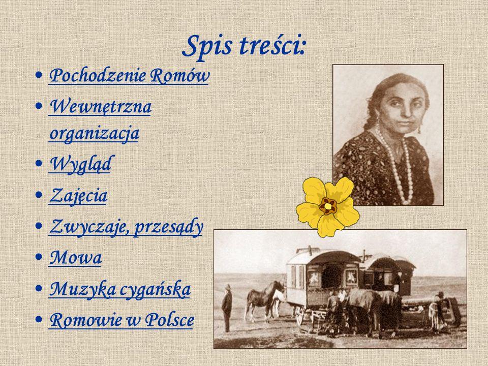 Spis treści: Pochodzenie Romów Wewnętrzna organizacjaWewnętrzna organizacja Wygląd Zajęcia Zwyczaje, przesądy Mowa Muzyka cygańska Romowie w Polsce