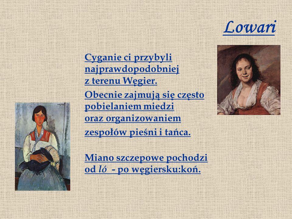 Lowari Cyganie ci przybyli najprawdopodobniej z terenu Węgier. Obecnie zajmują się często pobielaniem miedzi oraz organizowaniem zespołów pieśni i tań