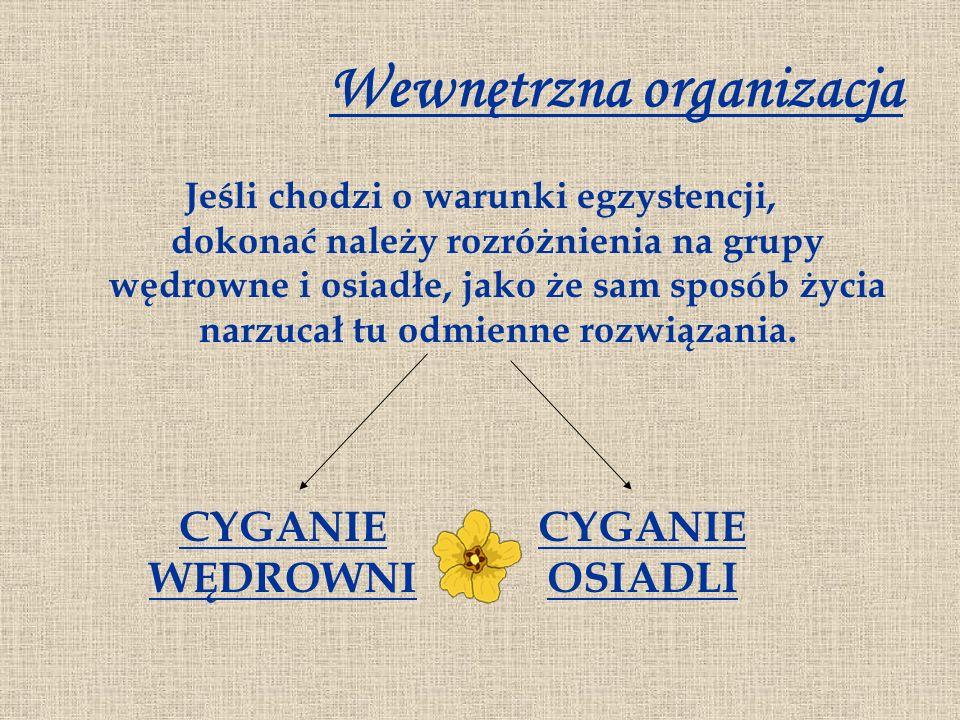 Wewnętrzna organizacja Jeśli chodzi o warunki egzystencji, dokonać należy rozróżnienia na grupy wędrowne i osiadłe, jako że sam sposób życia narzucał