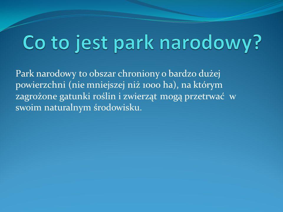*Znajduje się on w Polsce południowej, w powiecie krakowskim, w województwie małopolskim.