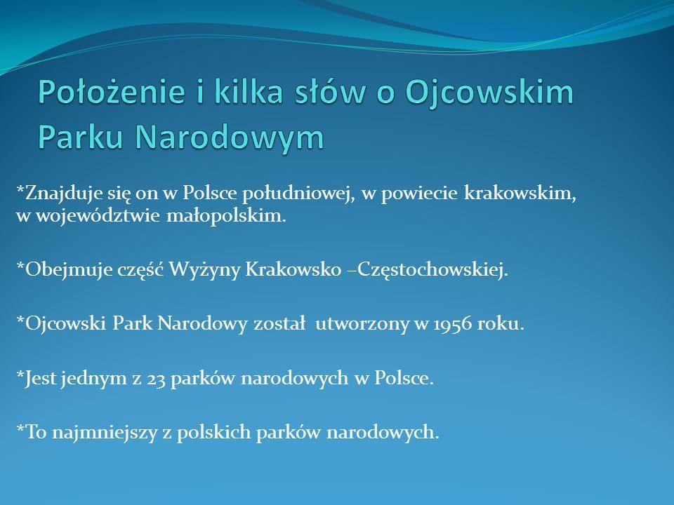 *Znajduje się on w Polsce południowej, w powiecie krakowskim, w województwie małopolskim. *Obejmuje część Wyżyny Krakowsko –Częstochowskiej. *Ojcowski