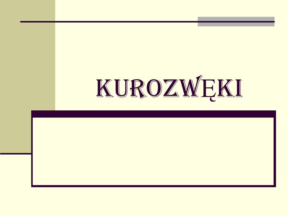 Kurozw Ę ki