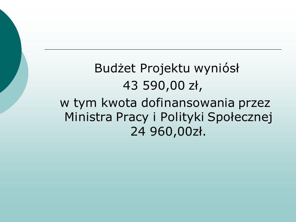 Budżet Projektu wyniósł 43 590,00 zł, w tym kwota dofinansowania przez Ministra Pracy i Polityki Społecznej 24 960,00zł.