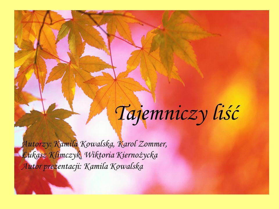 Tajemniczy liść Autorzy: Kamila Kowalska, Karol Zommer, Łukasz Klimczyk, Wiktoria Kiernożycka Autor prezentacji: Kamila Kowalska