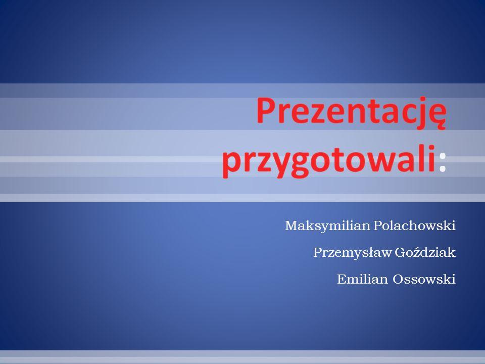Maksymilian Polachowski Przemysław Goździak Emilian Ossowski
