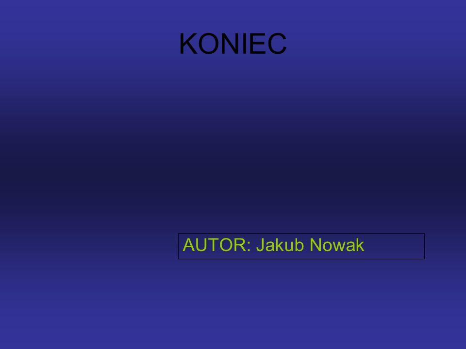 KONIEC AUTOR: Jakub Nowak