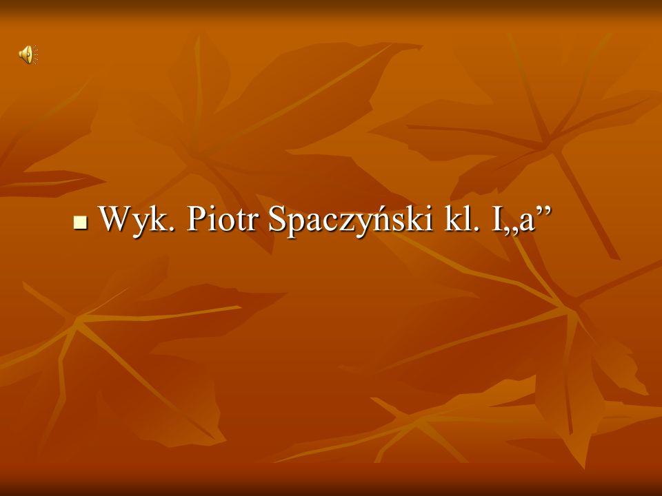 Wyk. Piotr Spaczyński kl. Ιa Wyk. Piotr Spaczyński kl. Ιa