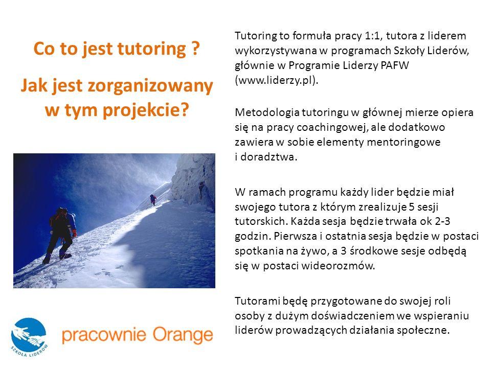 Tutoring to formuła pracy 1:1, tutora z liderem wykorzystywana w programach Szkoły Liderów, głównie w Programie Liderzy PAFW (www.liderzy.pl). Metodol
