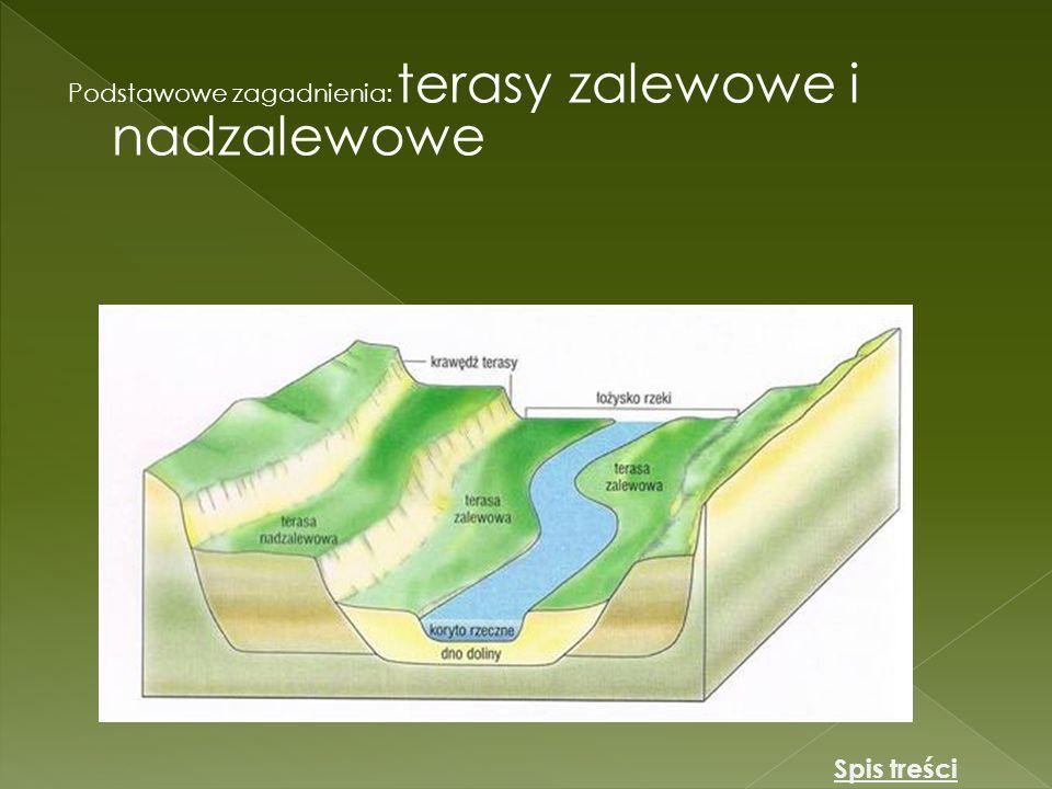 Podstawowe zagadnienia Ujście deltowe i lejkowe Ujście lejkowe Ujście deltowe Spis treści