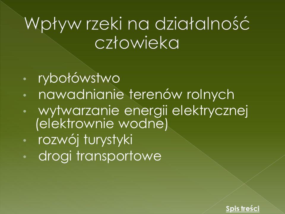 Polskie rzeki uchodzą do trzech różnych akwenów morskich.