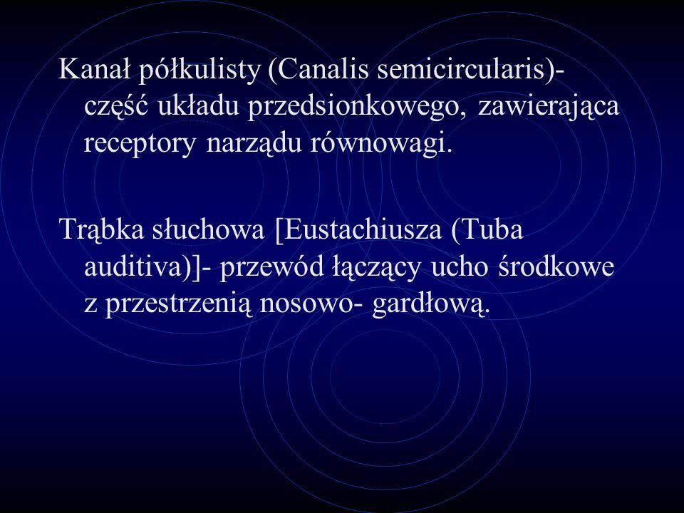 Przewód słuchowy zewnętrzny (Meatus acusticus externus)- przewodzi fale głosowe do błony bębenkowej. Błona bębenkowa (Membrana tympani)- przezroczysta