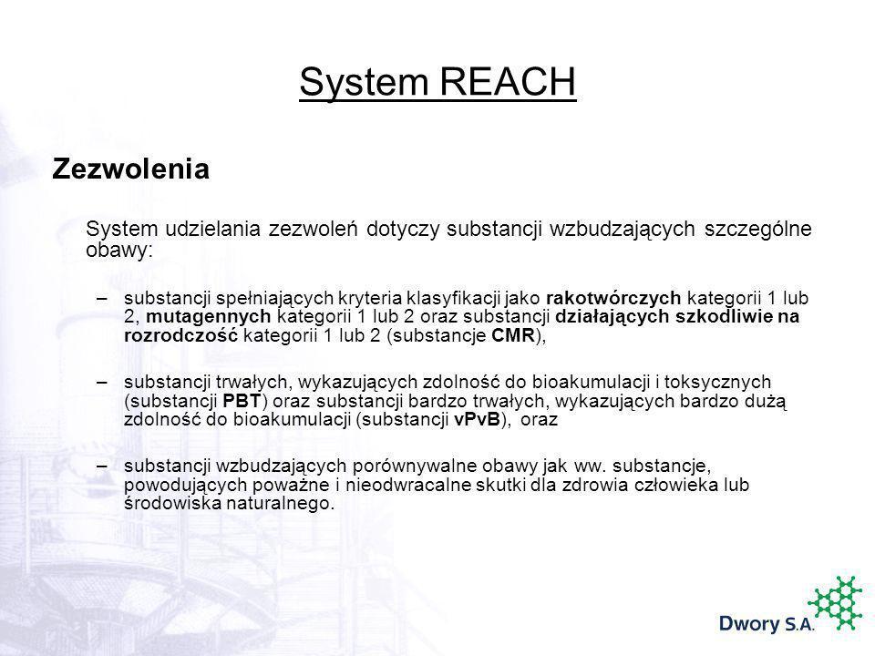 System REACH Zezwolenia System udzielania zezwoleń dotyczy substancji wzbudzających szczególne obawy: –substancji spełniających kryteria klasyfikacji