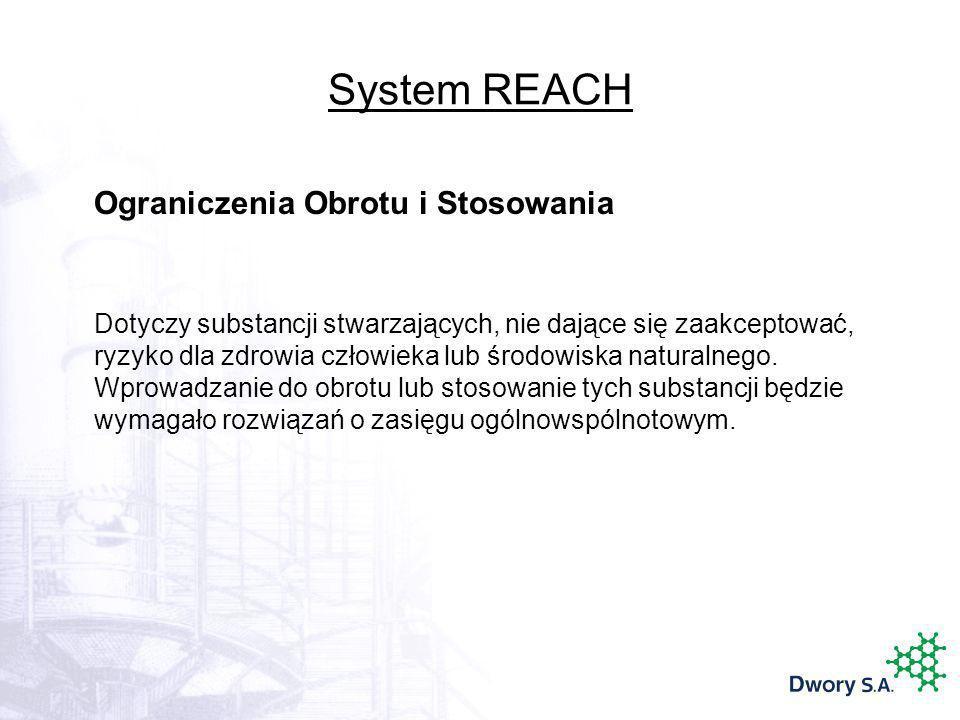 System REACH Ograniczenia Obrotu i Stosowania Dotyczy substancji stwarzających, nie dające się zaakceptować, ryzyko dla zdrowia człowieka lub środowis