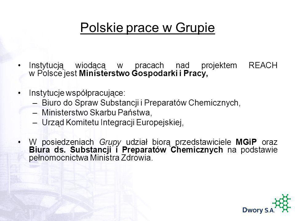 Polskie prace w Grupie Instytucją wiodącą w pracach nad projektem REACH w Polsce jest Ministerstwo Gospodarki i Pracy, Instytucje współpracujące: –Biu