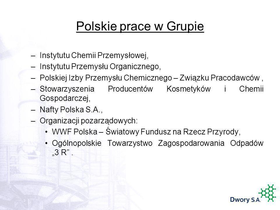 Polskie prace w Grupie –Instytutu Chemii Przemysłowej, –Instytutu Przemysłu Organicznego, –Polskiej Izby Przemysłu Chemicznego – Związku Pracodawców,