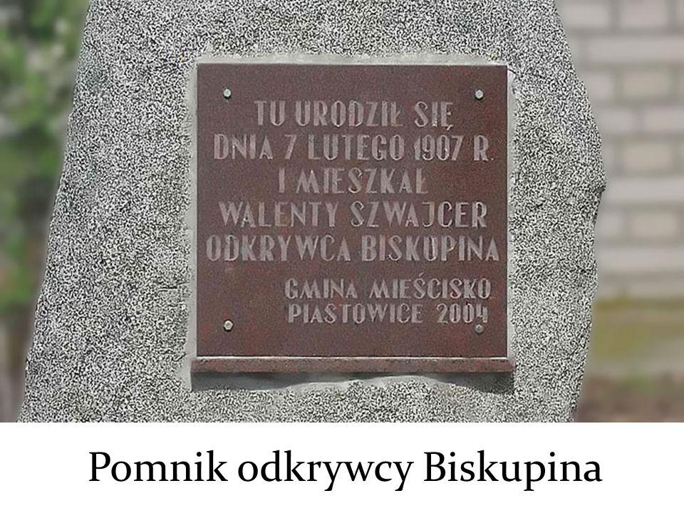Pomnik odkrywcy Biskupina