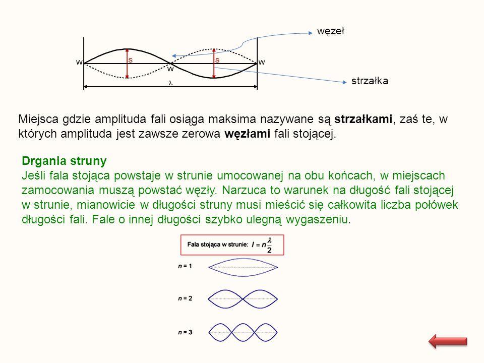 węzeł strzałka Miejsca gdzie amplituda fali osiąga maksima nazywane są strzałkami, zaś te, w których amplituda jest zawsze zerowa węzłami fali stojące