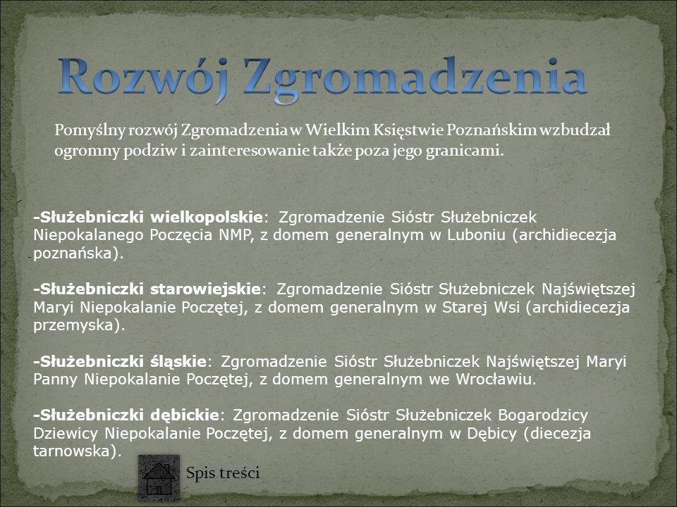 Pomyślny rozwój Zgromadzenia w Wielkim Księstwie Poznańskim wzbudzał ogromny podziw i zainteresowanie także poza jego granicami. - -Służebniczki wielk
