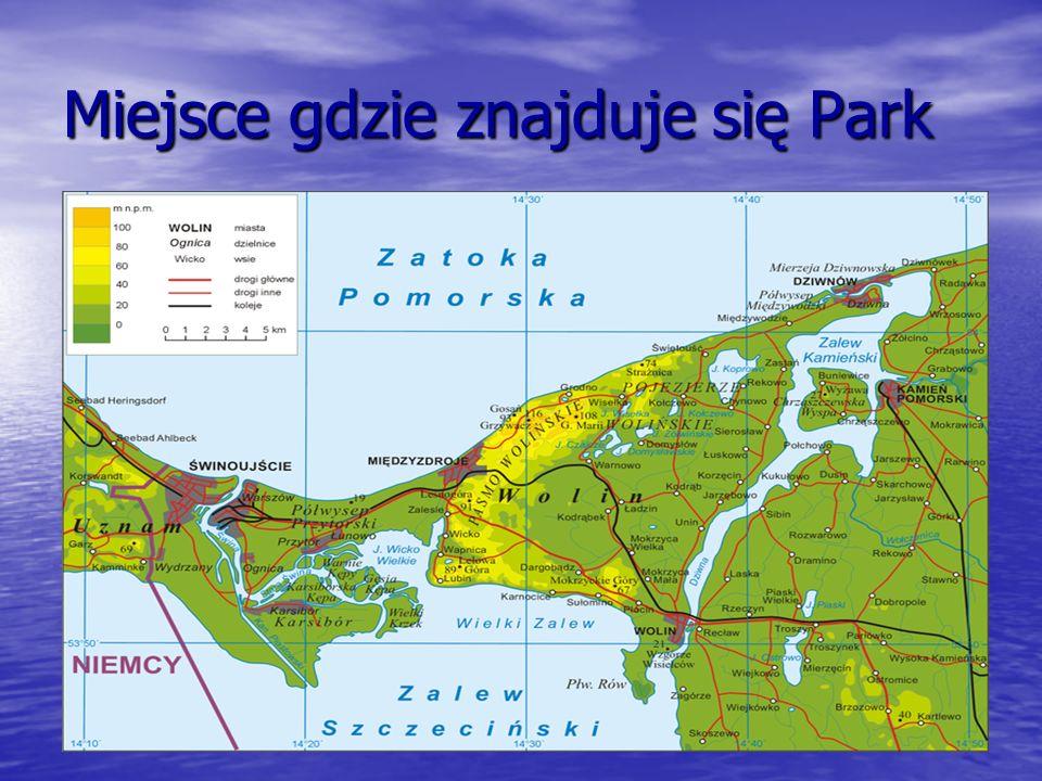 Miejsce gdzie znajduje się Park