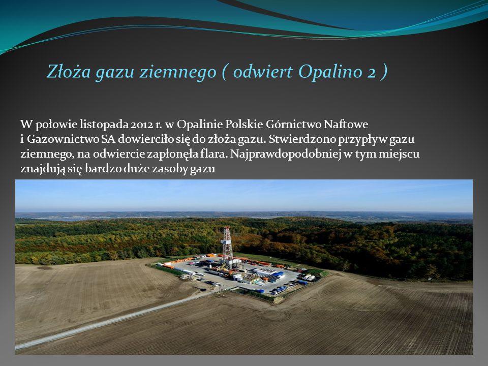 Złoża gazu ziemnego ( odwiert Opalino 2 ) W połowie listopada 2012 r. w Opalinie Polskie Górnictwo Naftowe i Gazownictwo SA dowierciło się do złoża ga