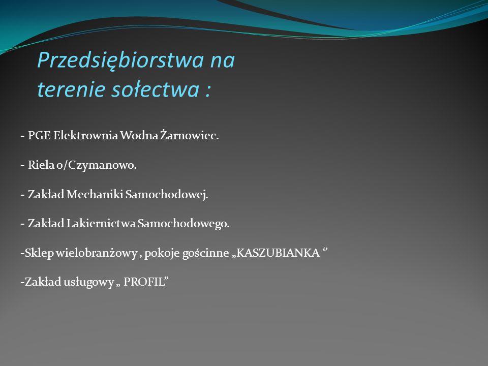 Przedsiębiorstwa na terenie sołectwa : - PGE Elektrownia Wodna Żarnowiec. - Riela o/Czymanowo. - Zakład Mechaniki Samochodowej. - Zakład Lakiernictwa