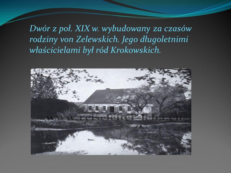 Dwór z poł. XIX w. wybudowany za czasów rodziny von Zelewskich. Jego długoletnimi właścicielami był ród Krokowskich.