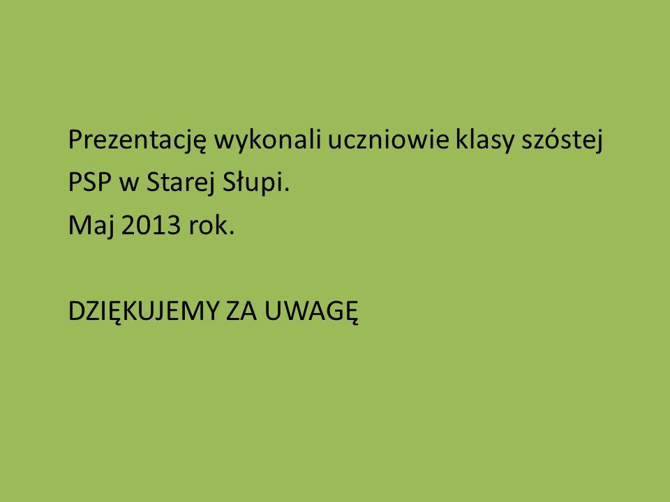 Prezentację wykonali uczniowie klasy szóstej PSP w Starej Słupi. Maj 2013 rok. DZIĘKUJEMY ZA UWAGĘ