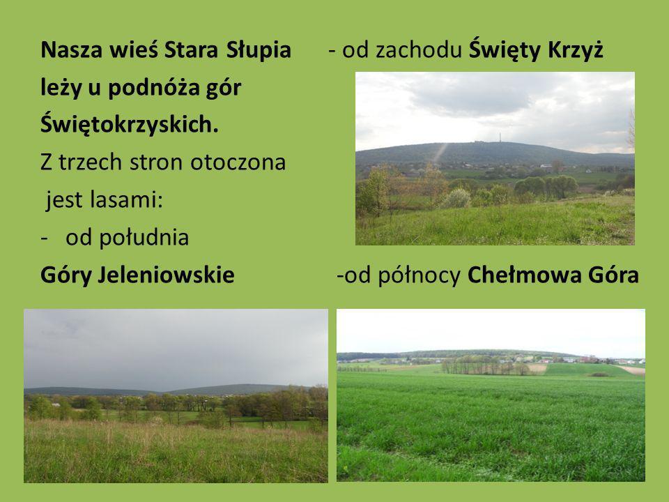 Nasza wieś Stara Słupia - od zachodu Święty Krzyż leży u podnóża gór Świętokrzyskich. Z trzech stron otoczona jest lasami: -od południa Góry Jeleniows