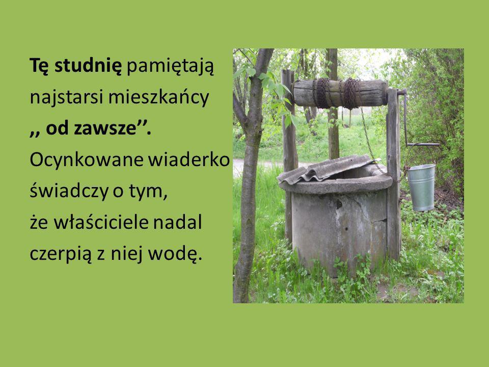 Tę studnię pamiętają najstarsi mieszkańcy,, od zawsze. Ocynkowane wiaderko świadczy o tym, że właściciele nadal czerpią z niej wodę.
