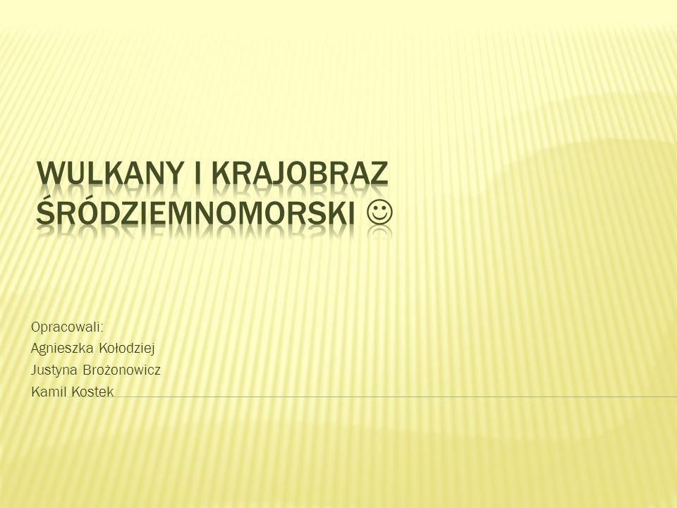 Opracowali: Agnieszka Kołodziej Justyna Brożonowicz Kamil Kostek