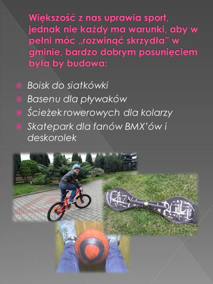 Boisk do siatkówki Basenu dla pływaków Ścieżek rowerowych dla kolarzy Skatepark dla fanów BMXów i deskorolek