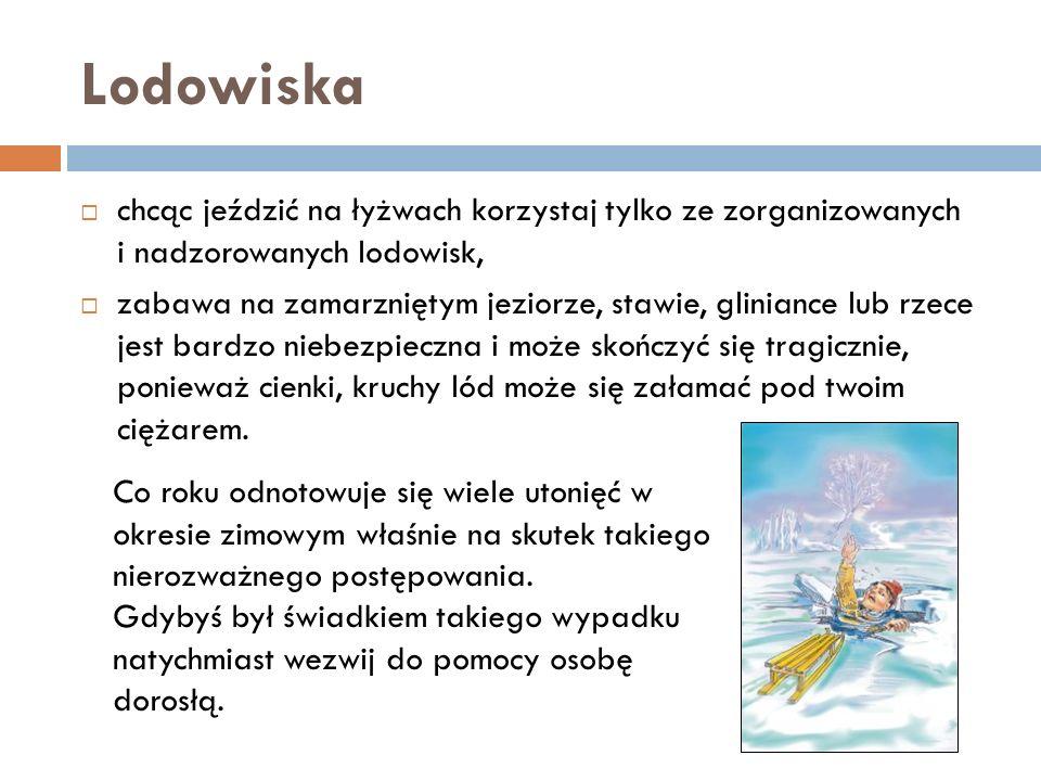 Lodowiska chcąc jeździć na łyżwach korzystaj tylko ze zorganizowanych i nadzorowanych lodowisk, zabawa na zamarzniętym jeziorze, stawie, gliniance lub