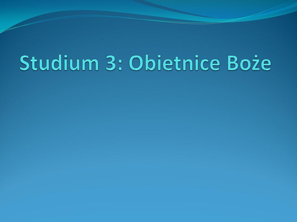 Studium 3: Pytania 1.