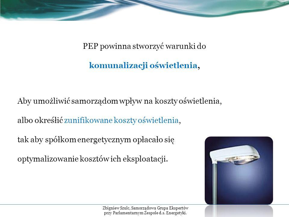 PEP powinna stworzyć warunki do komunalizacji oświetlenia, Aby umożliwić samorządom wpływ na koszty oświetlenia, albo okreśłić zunifikowane koszty oświetlenia, tak aby spółkom energetycznym opłacało się optymalizowanie kosztów ich eksploatacji.