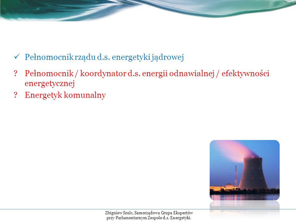 Pełnomocnik rządu d.s. energetyki jądrowej Pełnomocnik / koordynator d.s.