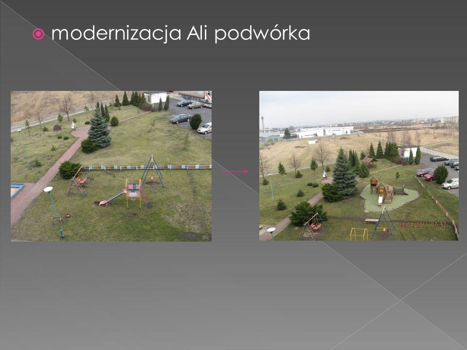 modernizacja Ali podwórka
