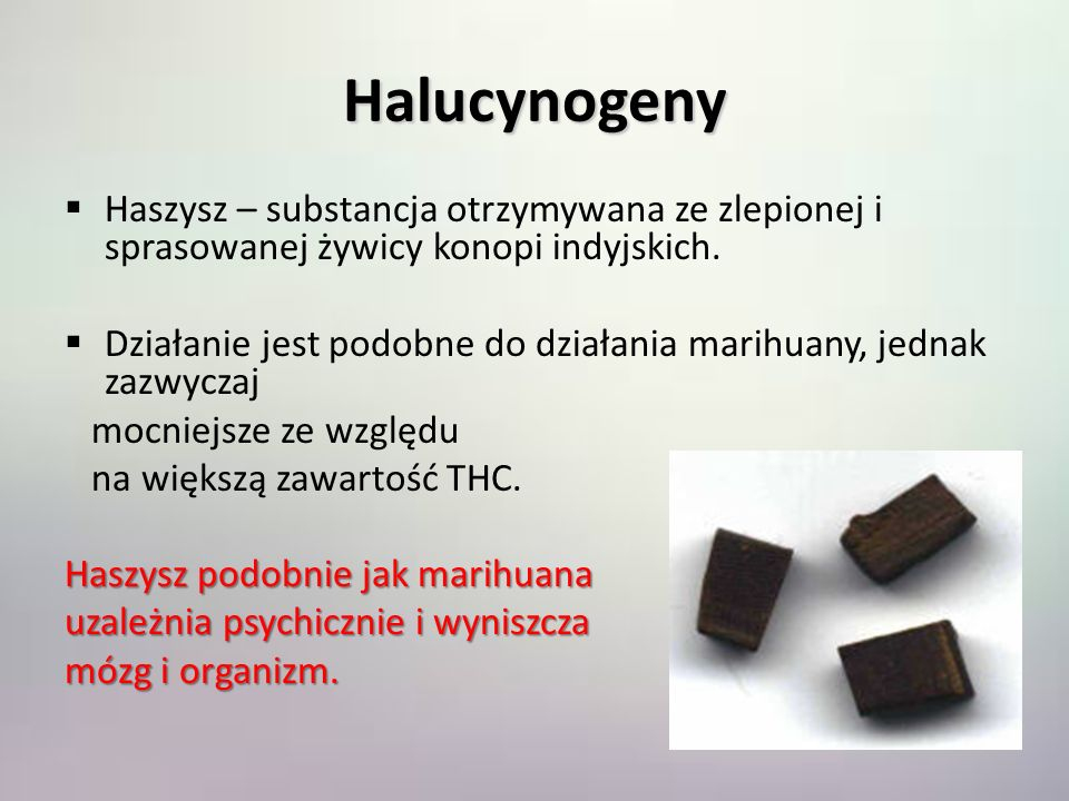 Halucynogeny Haszysz – substancja otrzymywana ze zlepionej i sprasowanej żywicy konopi indyjskich. Działanie jest podobne do działania marihuany, jedn