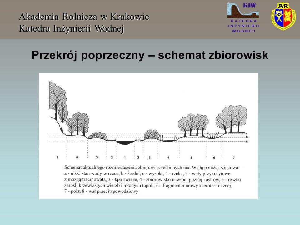 Wyłom w obwałowaniu Akademia Rolnicza w Krakowie Katedra Inżynierii Wodnej Czas formowania się wyłomu gdzie: - jest złożoną średnią szerokością wyłomu, - h w określone w [m] dla materiałów łatwo wymywanych dla materiałów trudno erodujących