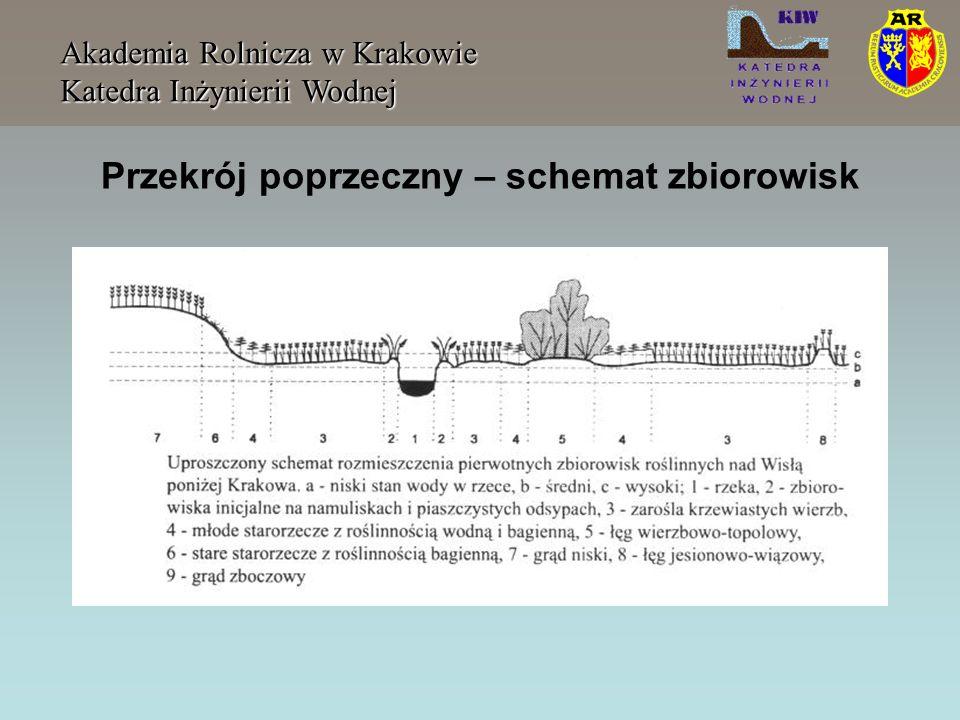 Przekrój poprzeczny – powierzchnia Akademia Rolnicza w Krakowie Katedra Inżynierii Wodnej