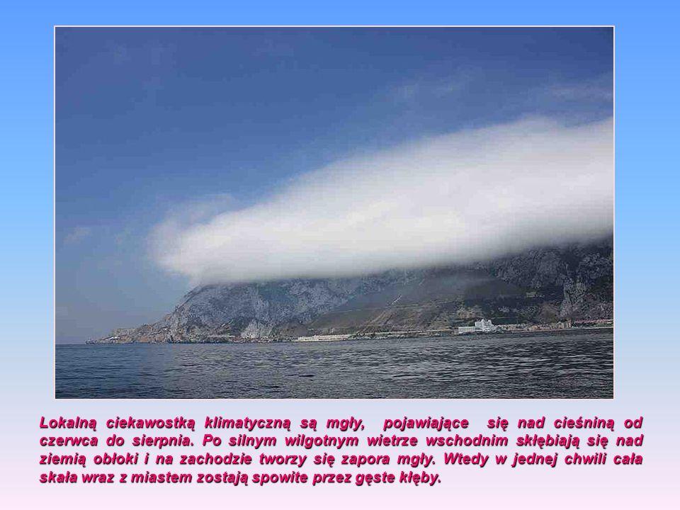Gibraltar leży w zasięgu klimatu oceanicznego odznaczającego się łagodnymi zimami i umiarkowanie gorącym latem. Najcieplejszym miesiącem jest sierpień