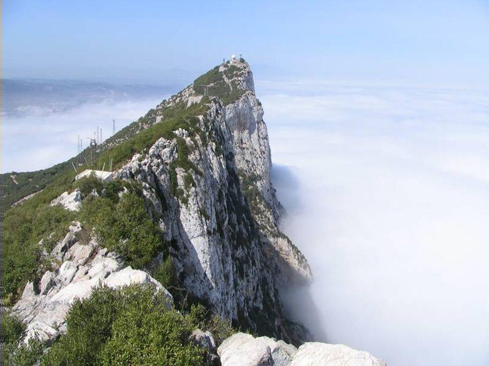 Lokalną ciekawostką klimatyczną są mgły, pojawiające się nad cieśniną od czerwca do sierpnia. Po silnym wilgotnym wietrze wschodnim skłębiają się nad