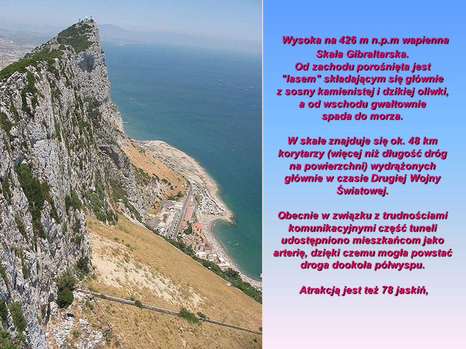 Ze szczytu Skały Gibraltarskiej, czyli The Top of the Rock. rozciąga się fantastyczny widok na Cieśninę Gibraltarską i góry Atlas. Wcześniej kolejka z