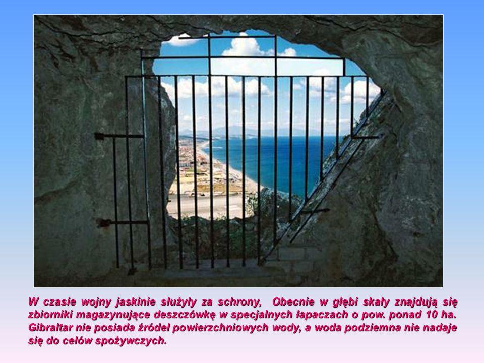 Wysoka na 426 m n.p.m wapienna Skała Gibraltarska. Wysoka na 426 m n.p.m wapienna Skała Gibraltarska. Od zachodu porośnięta jest