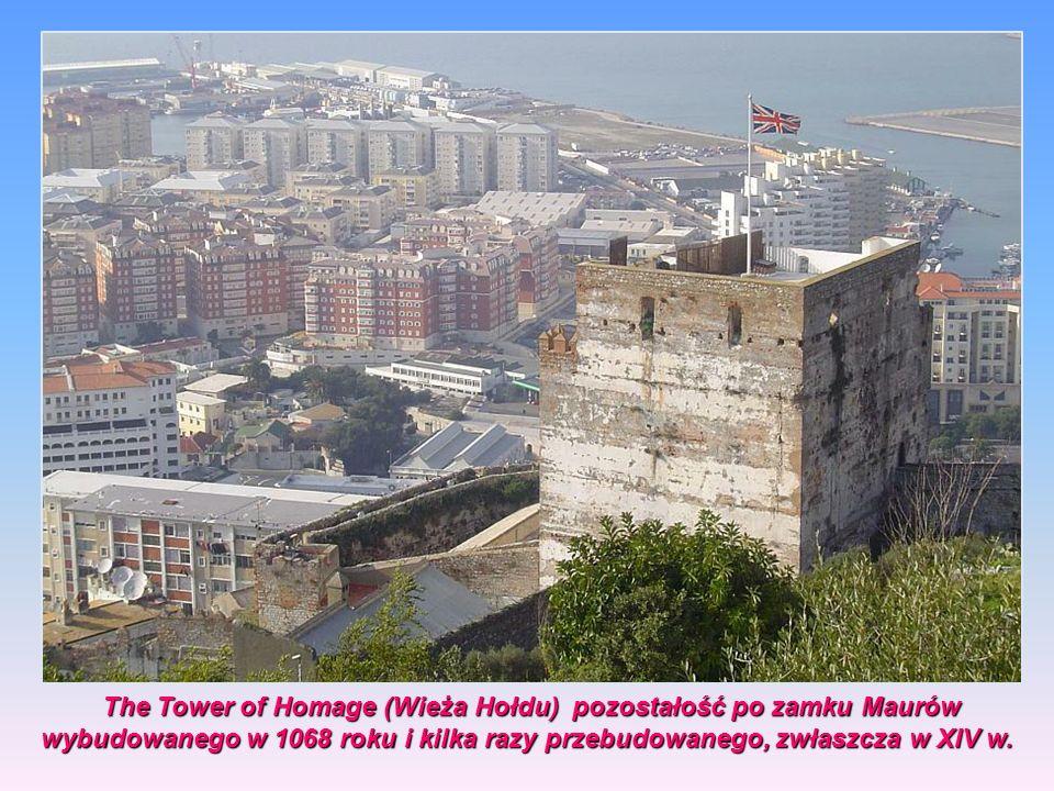 Moorish Castle (pol. zamek Maurów) - fortyfikacja na Gibraltarze stworzona z rozmaitych budynków, bram, murów fortyfikacyjnych, The Tower of Homage or
